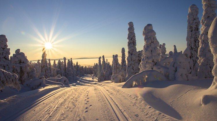 Luminen tammikuu